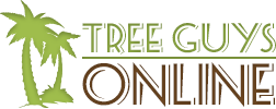 Melbourne FL Tree Service