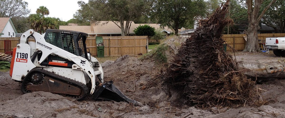 Tree Stump Removal Melbourne FL